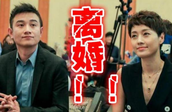 文章和马伊俐宣布离婚的照片 - 1