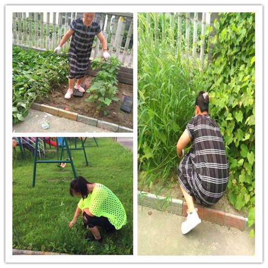 整装待发逐梦起航――海安市瓦甸幼儿园暑期系列活动