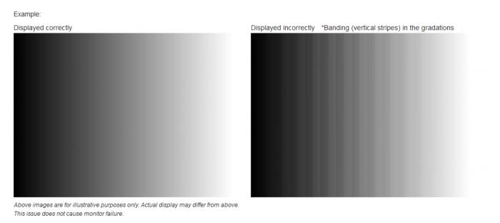 累积更新KB4505903发布:修复Win10色彩显示不正确问题的照片 - 2