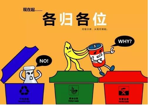 垃圾分类公司如何挣钱(教你经营垃圾分类生意)
