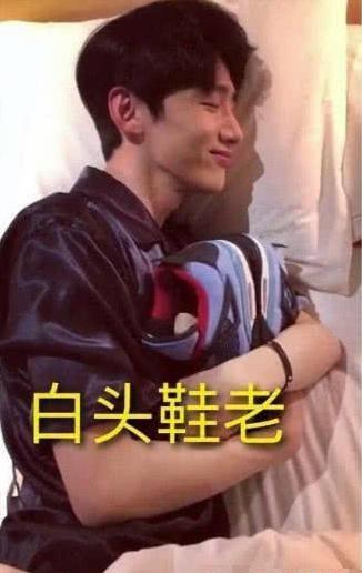 《上海堡垒》票价最高近千元!鹿晗粉丝成新韭菜?的照片 - 14