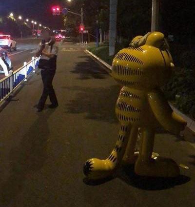 西新桥凌晨2点有人报警:1米6高的加菲猫被偷
