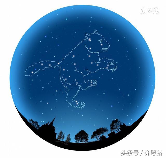 牛郎星属于什么星座(你都知道吗)