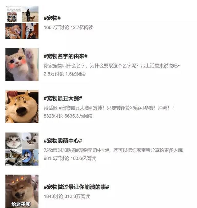 微博上那些云养宠的主子们,大多在这100个萌宠大V吸猫撸狗