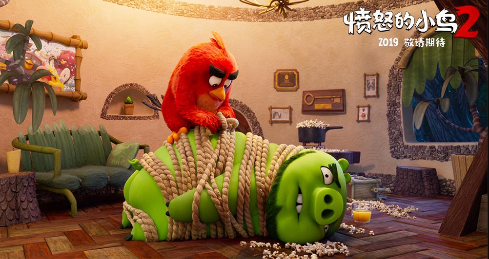 《愤怒的小鸟2》笑到停不下来的照片 - 4