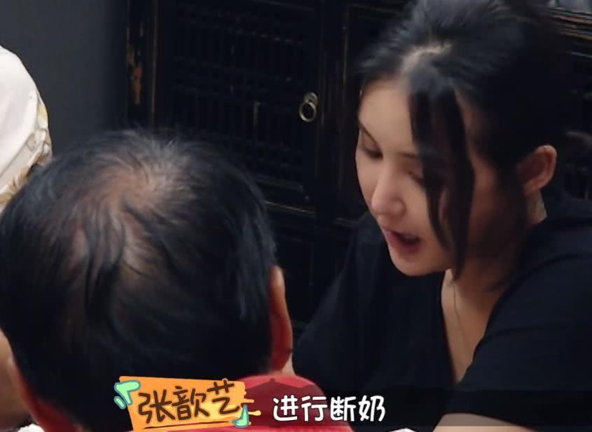 袁妈想让张歆艺当家庭主妇,袁弘当场直言:这样的下场就是离婚