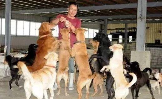 64岁的费玉清要退休了,你可能还不认识这个爱狗的段子手