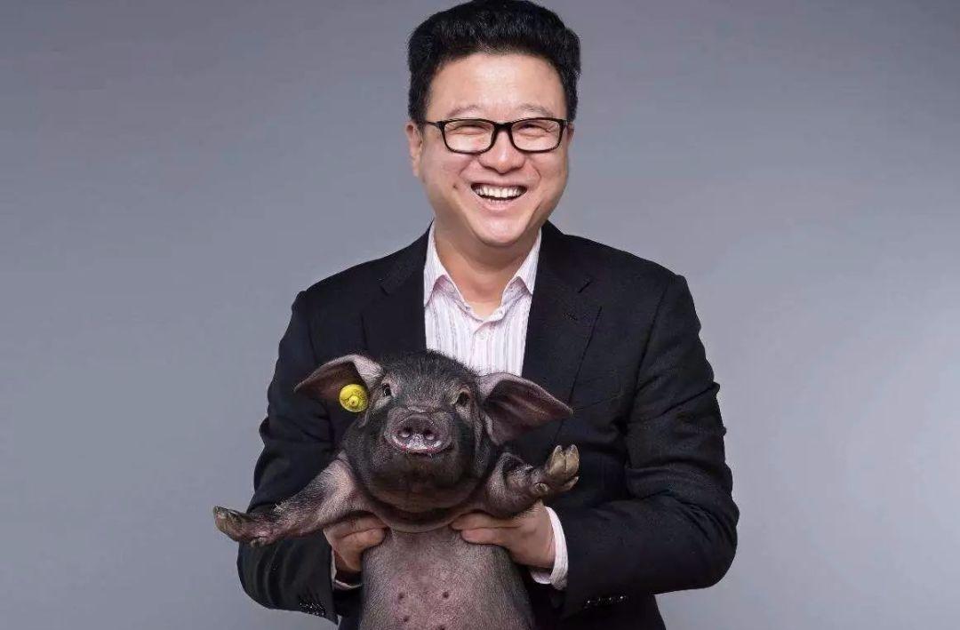 """丁磊卖""""猪""""记:网易考拉,富养的儿子为何成烫手的山芋?"""
