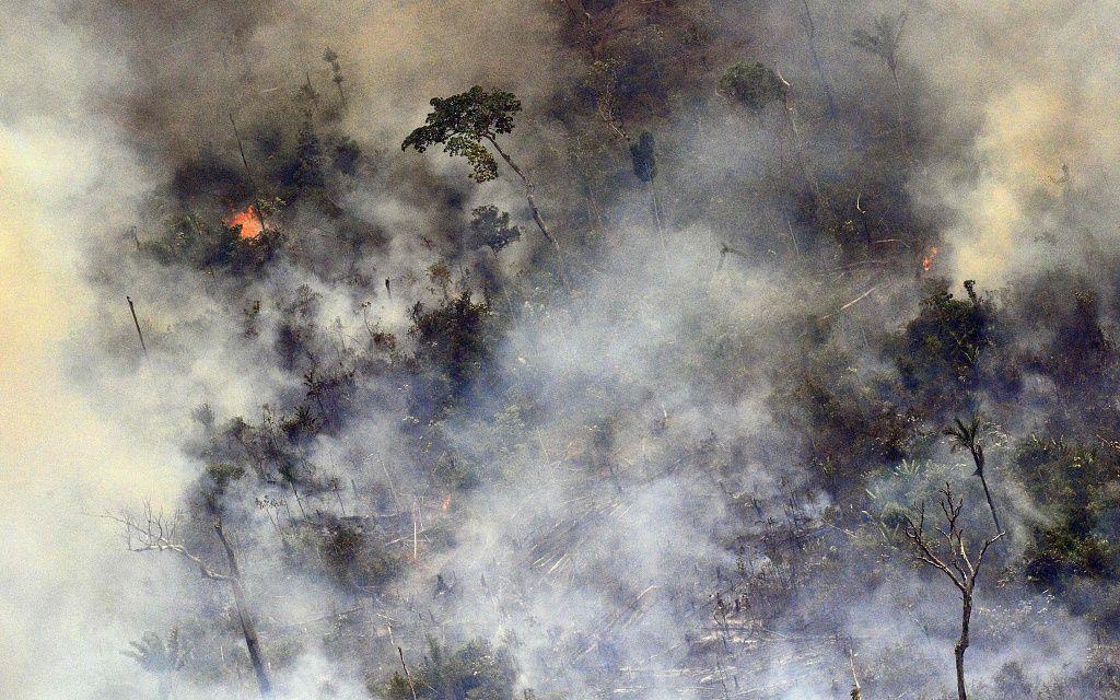 亚马孙雨林大火引全球怒火,九问回答你关注的问题的照片