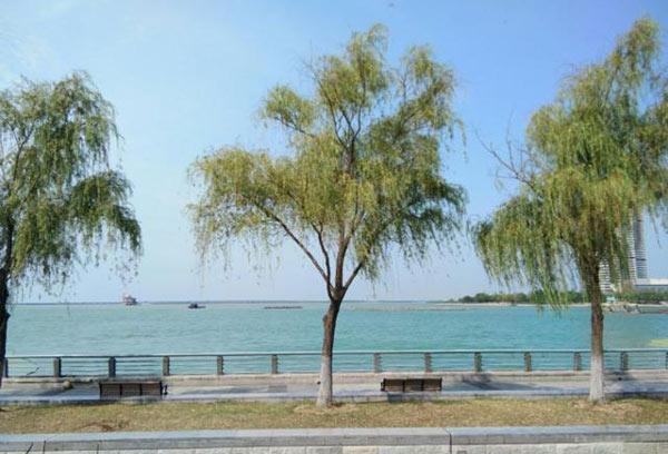 拆除滆湖9449亩网围养殖,常州西太湖水质明显改善!