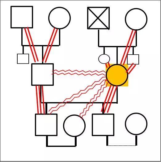 家庭内部资源分析——家庭图