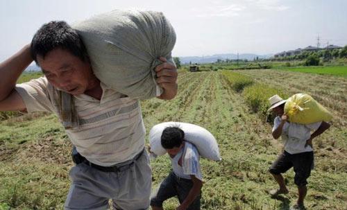 十年后,农村都将面临这三大难题!农民要警惕了
