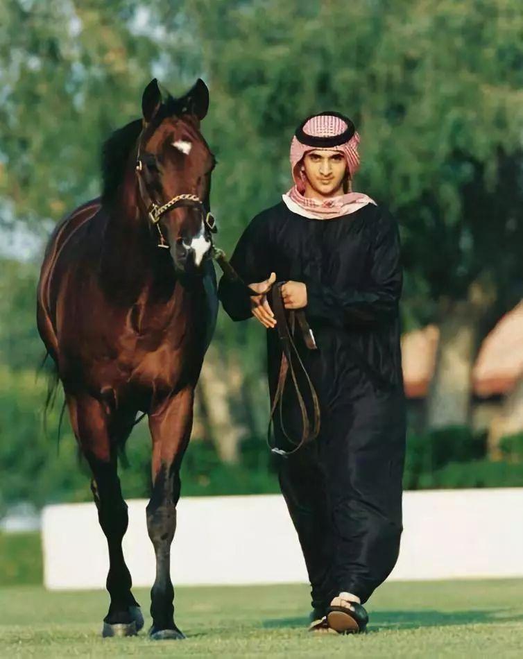 贫穷限制了我的想象力,看看迪拜人养的宠物!