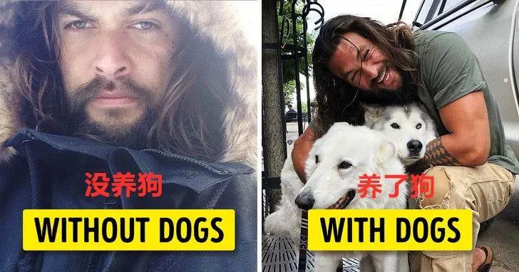 专家又来骗你养狗了,最新研究表明:养狗的人更容易幸福!