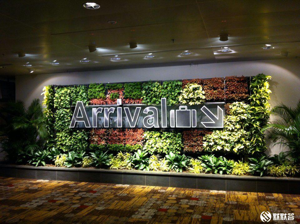 原创2019新加坡机场入境指南:流程、出入境卡、海关、携带现金等