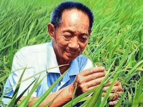 原创袁隆平去国外领粮食奖,奖杯丢在海关,他说:怪不得行李变轻了