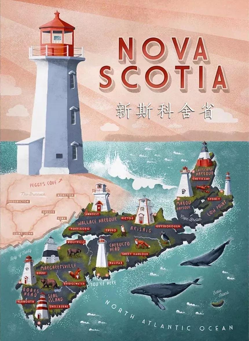 明信片上的佩姬湾:迷人的灯塔照亮星辰大海