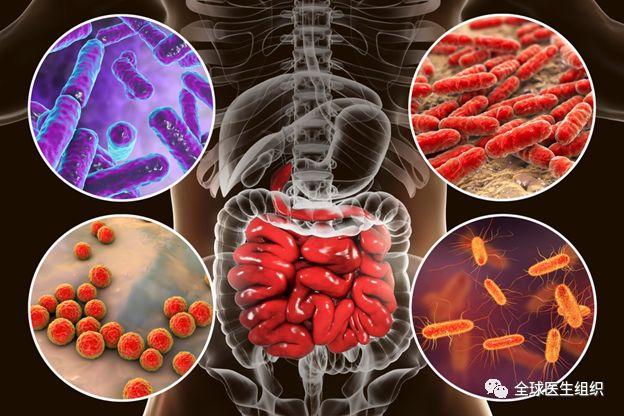|必读|大便微生物菌群测序公司申请破产暴露了哪些臭事儿