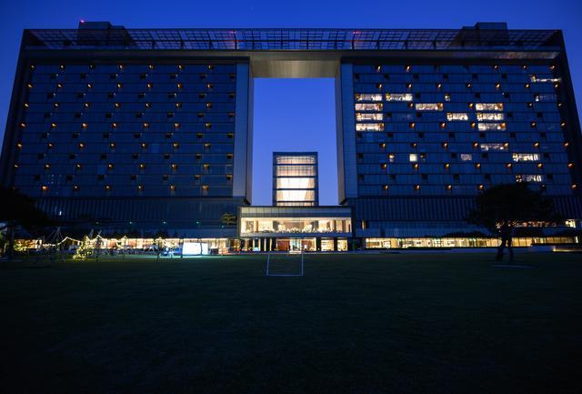 原创南京这家酒店有2只不怕人的大白鹅,还有很多好东西