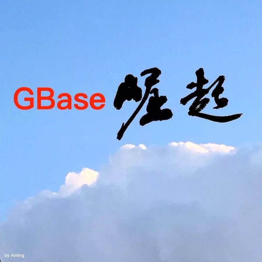 GBase的崛起,原来离不开ta