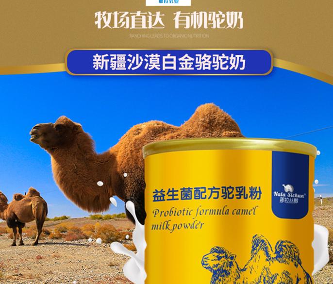 合肥哪里购买新疆骆驼奶粉,尽在合肥新疆特产总店