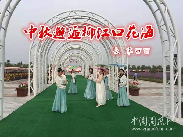 原创中秋邂逅柳江口花海(文宋丽丽)