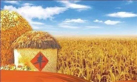 """""""中国农民丰收节""""文艺晚会在神农源风景区--仙人洞遗址广场举办"""