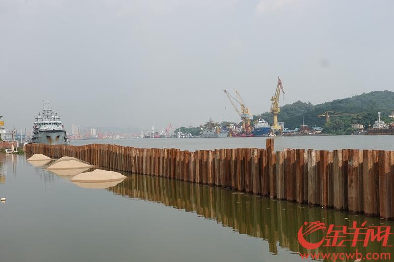 """珠江堤岸防洪玻璃加装基本完工,可抵御""""山竹""""级别台风"""