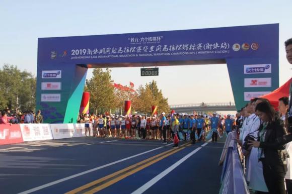 养元六个核桃连续赞助国际智力竞赛与国际马拉松,传承衡马运动精神