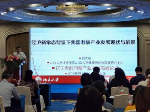 """""""2019 DISIE""""中国东北老龄产业的第一盛会开幕"""