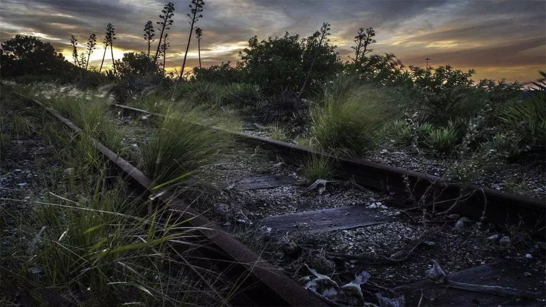 【名著选读】日本赤川次郎:《幽灵列车》