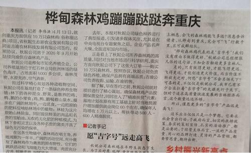 """""""重庆百万只林下生态散养鸡项目""""引进吉林省"""
