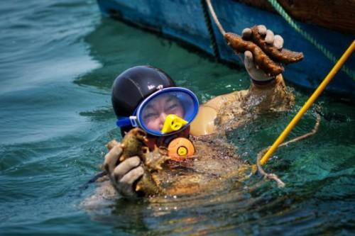 生态优先,绿色发展!2019海洋生态经济国际论坛发布《威海倡议》