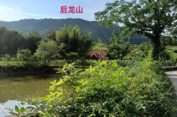 風水師羅桂元:風水文化第一次虎行墓——猛虎跳墻