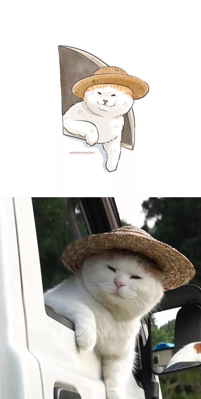 将网红猫画成了水彩画