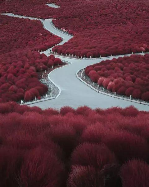 日本摄影师镜头下的中国,都是绝美的风景!