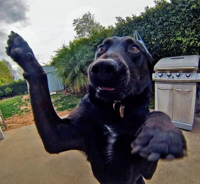 请放下你的相机,不要对我拍照