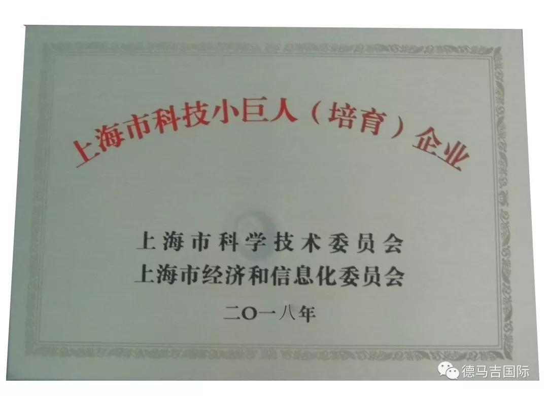 德馬吉上海市科技小巨人(培育)企業