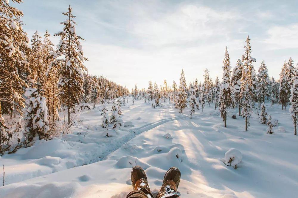 北极圈拉普兰地区