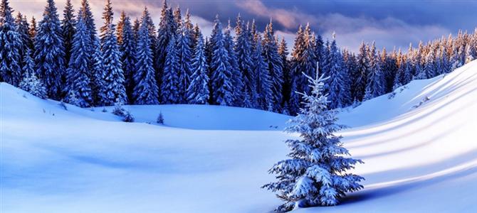 冬天不去旅行 你將錯過的絕美風光如此之多