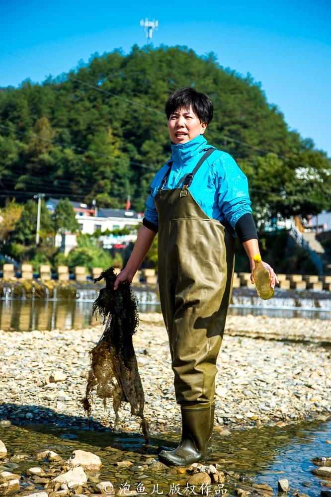 千岛湖的水为什么这么干净?看完这几张图片你就知道答案了