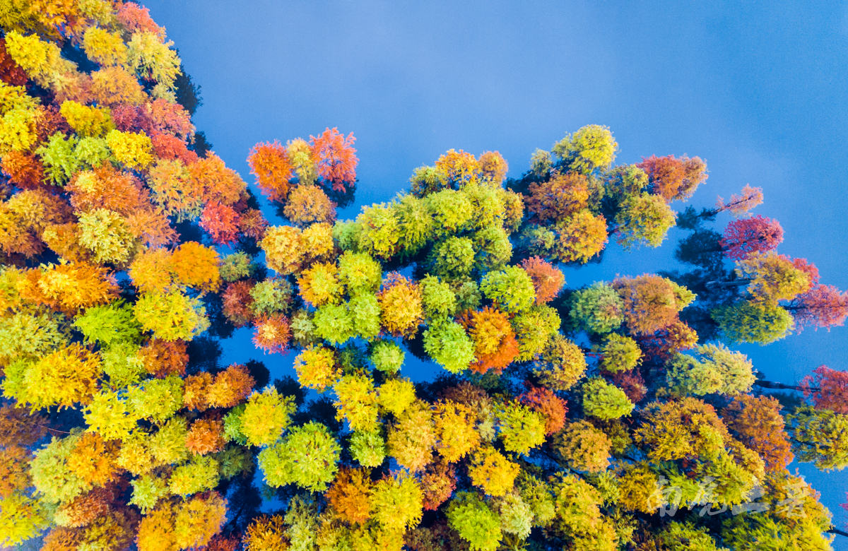 苏皖边界没听过的小众旅行地,秋天被誉为小九寨沟