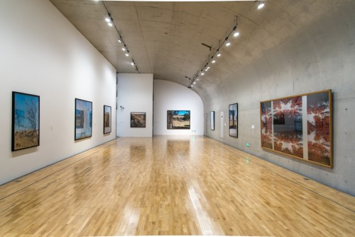 格莱斯顿画廊代理法国艺术家让-吕克·米蓝个展在上海龙美术馆(西岸馆)举办