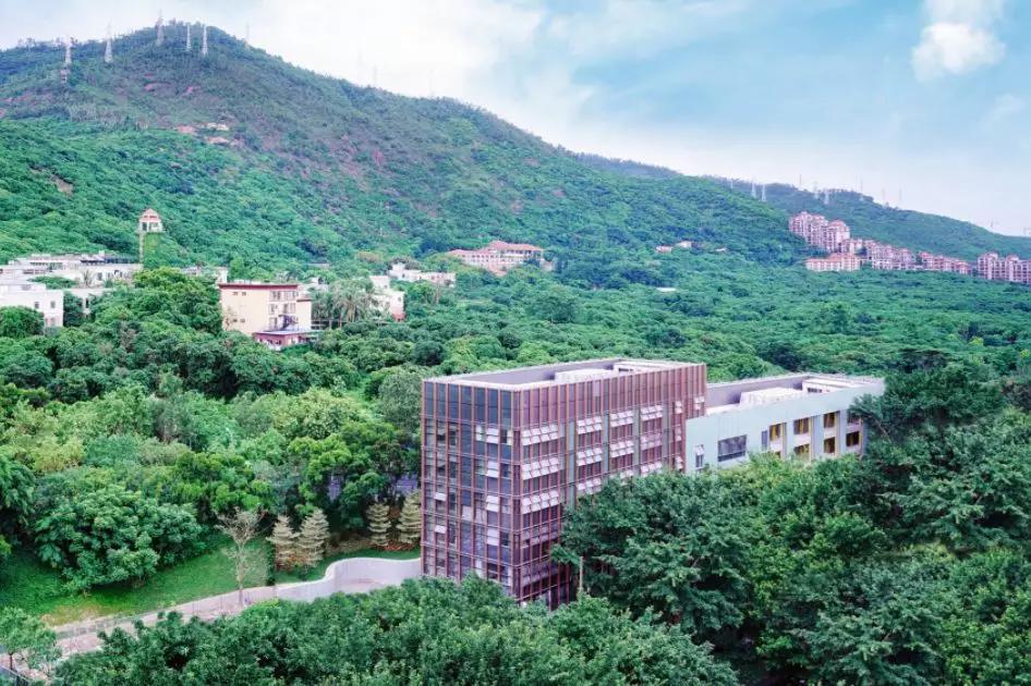 深圳南山国王学校秋季招生正式启动,学校优势何在?