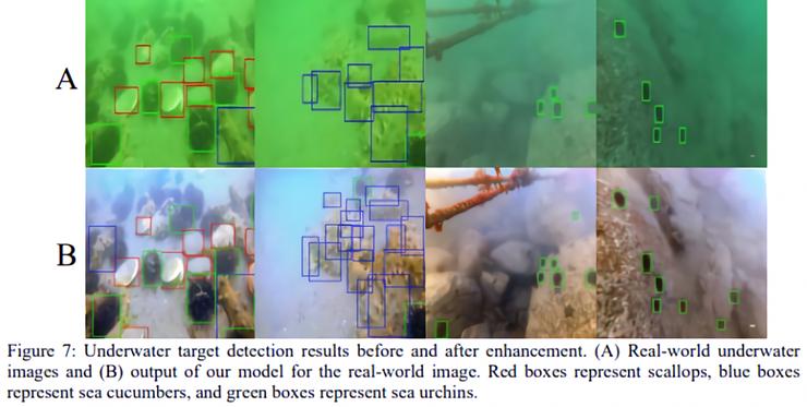 研究人员分享如何利用 AI 技术解决水下图片模糊和着色问题