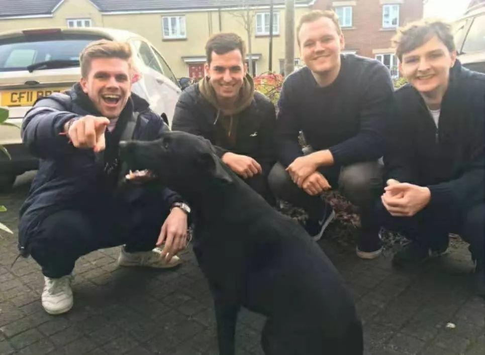 四位帅哥给邻居美女写信,竟然收到邻居家狗狗的回信!