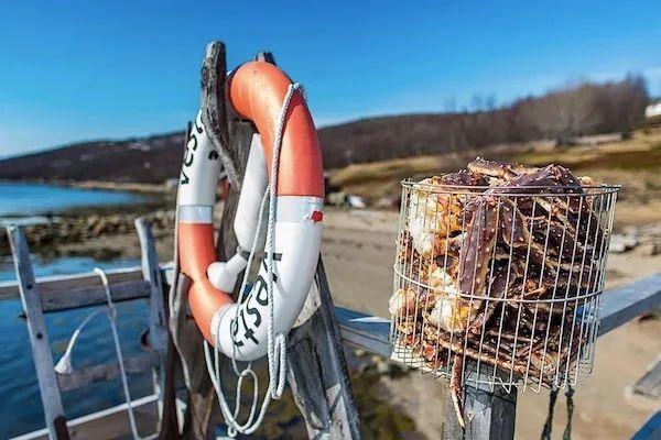 出海版捕蟹之旅