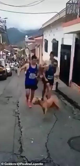 运动员比赛中踢飞小狗,赞助商愤怒解约:我们绝不容忍