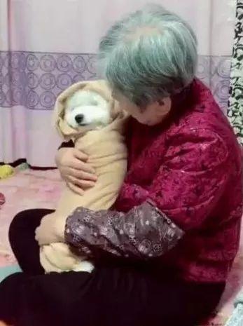 奶奶喂的不是饭,而是爱的猪饲料!