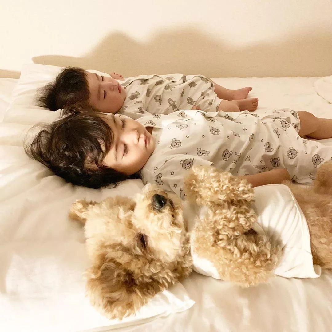 让狗狗带娃是什么体验?日本二胎美妈公开生活照,引千万网友围观